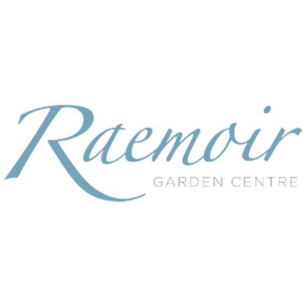 raemoir garden centre christmas trees