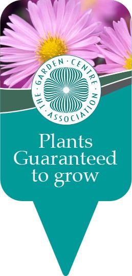 plant-guarantee